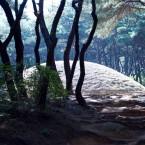 Tombe royale Gyeongju Coree-du-sud