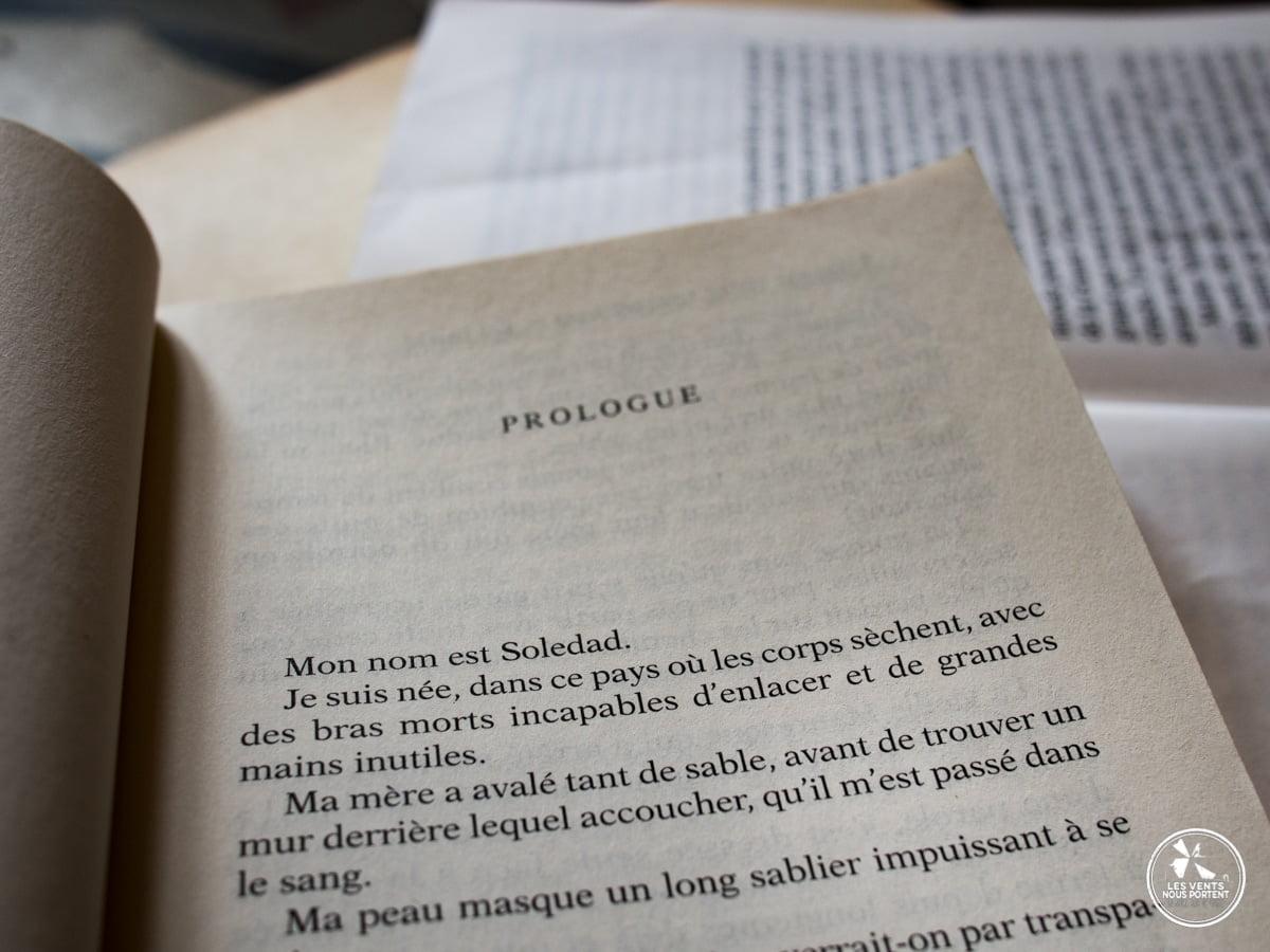 Le coeur cousu Un livre une destination blog de voyage