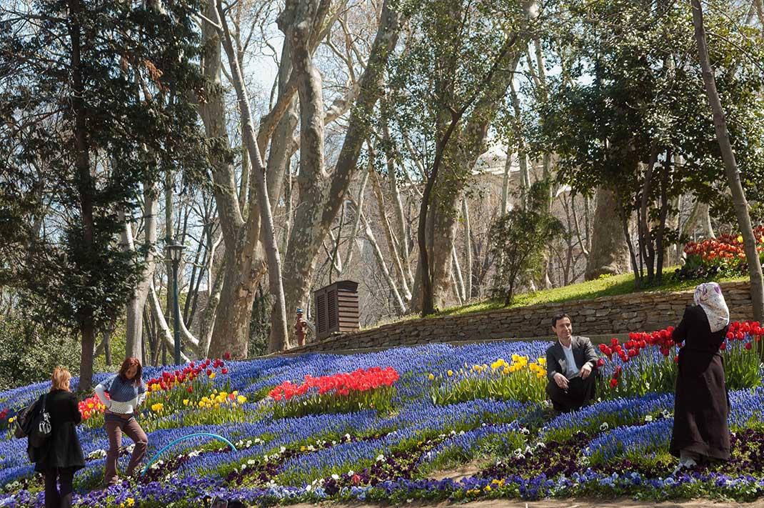 fleurs au parc gulhane conseils que visiter à istanbul