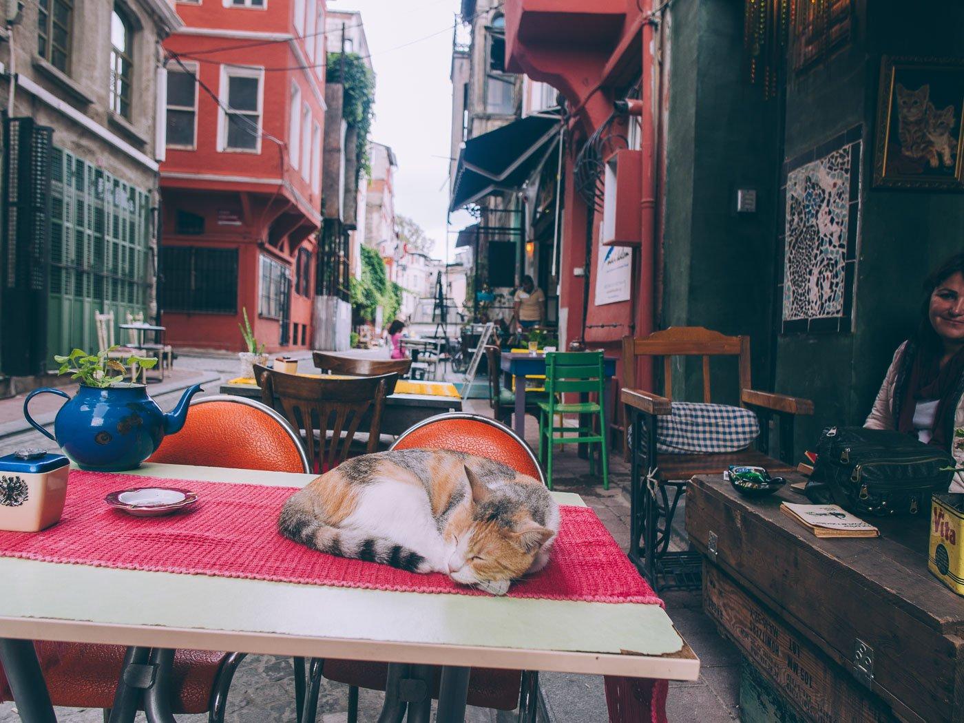 Visiter Fener et Balat à Istanbul